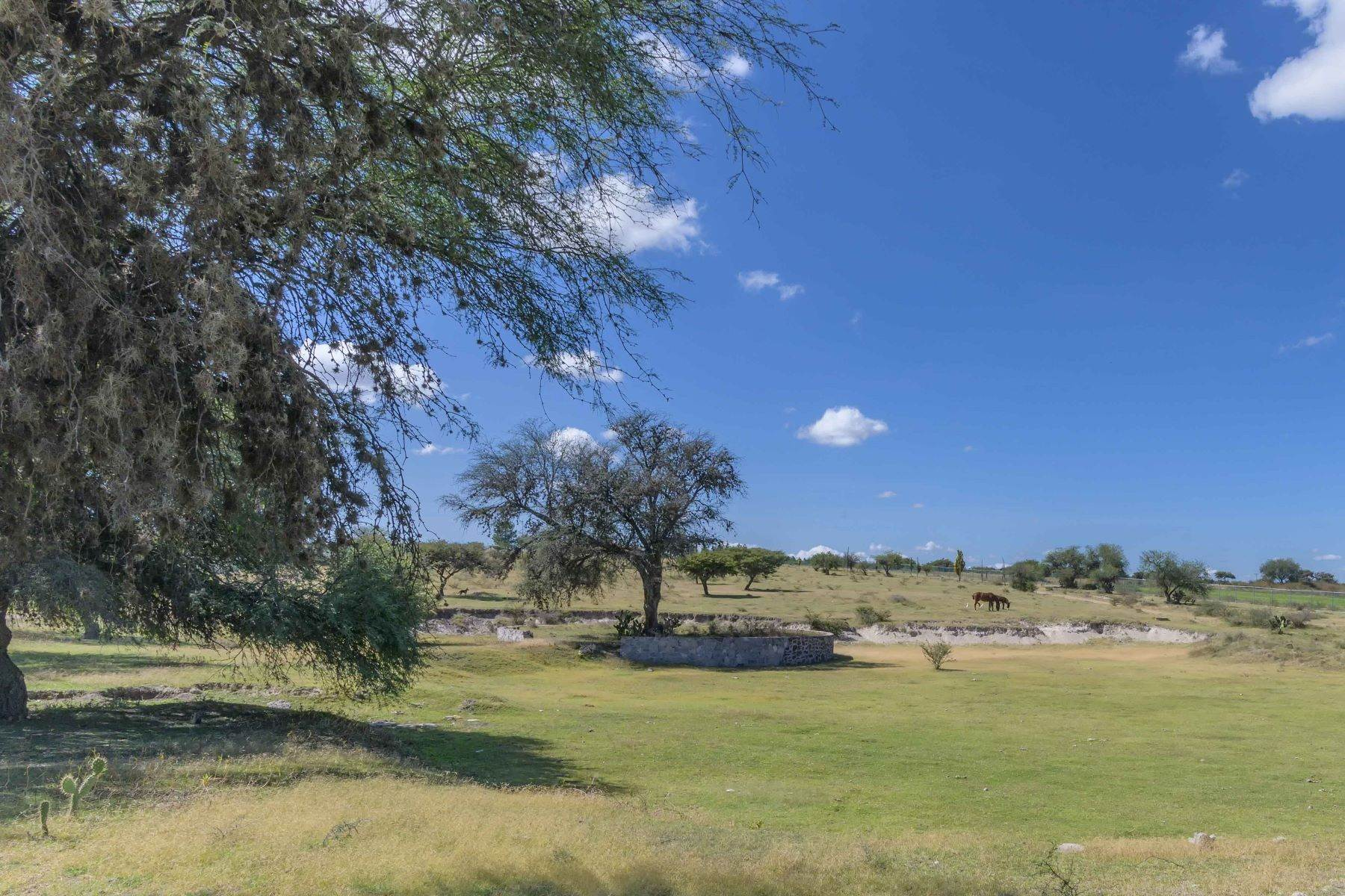 24. Farm and Ranch Properties for Sale at Calzada Los Pinos, Rancho La Aurora San Miguel De Allende, Guanajuato N/P Mexico
