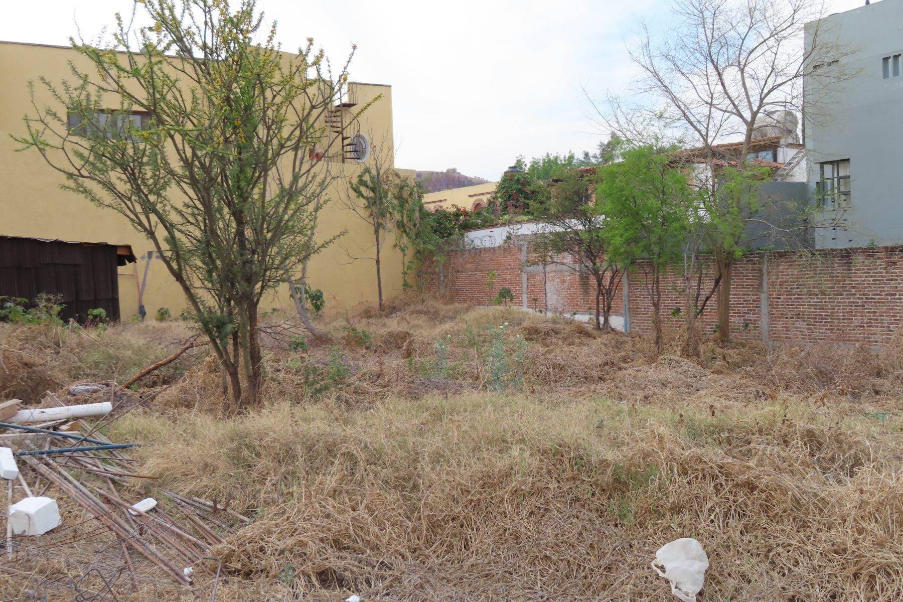 5. Land for Sale at Quiote Lot 2 Cerrada de Grillo - Lot 2 San Miguel De Allende, Guanajuato 37710 Mexico