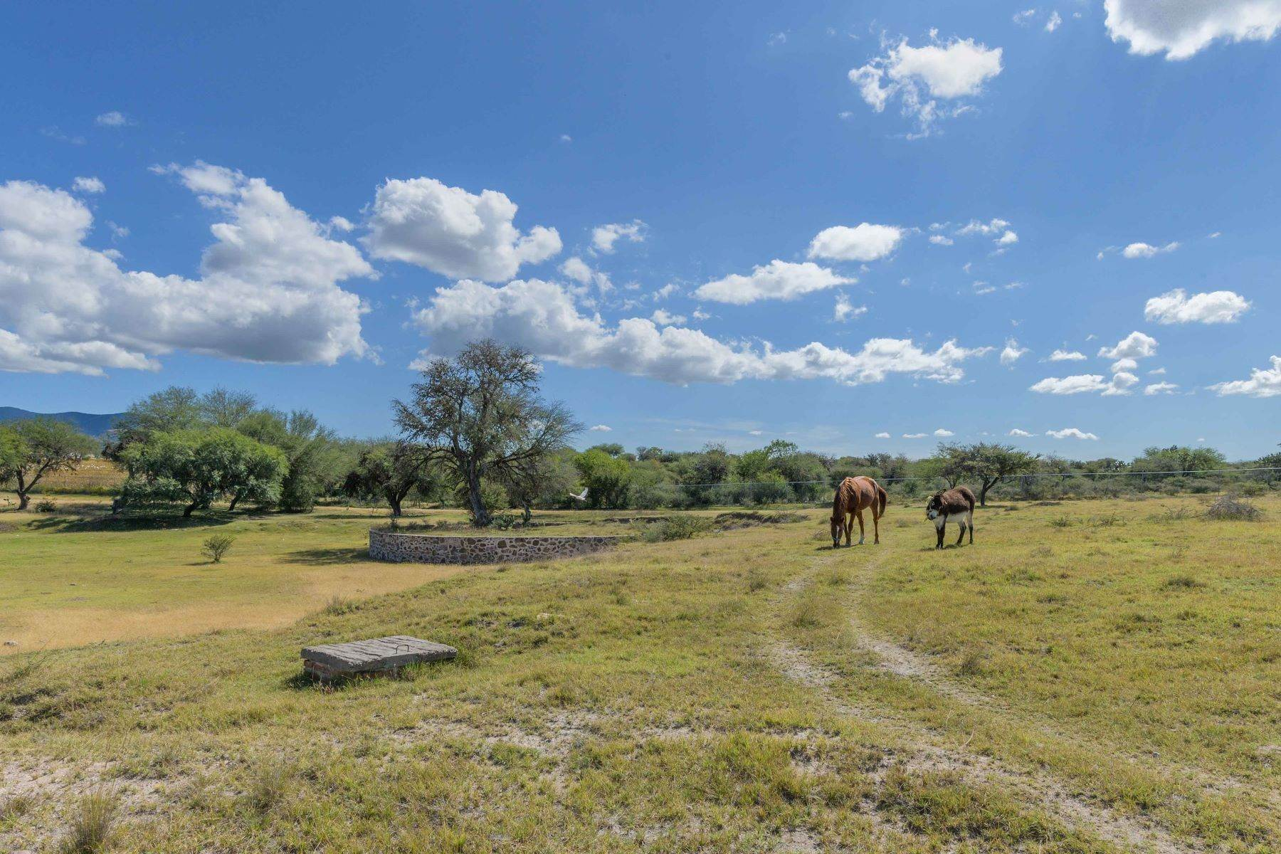 4. Farm and Ranch Properties for Sale at Calzada Los Pinos, Rancho La Aurora San Miguel De Allende, Guanajuato N/P Mexico