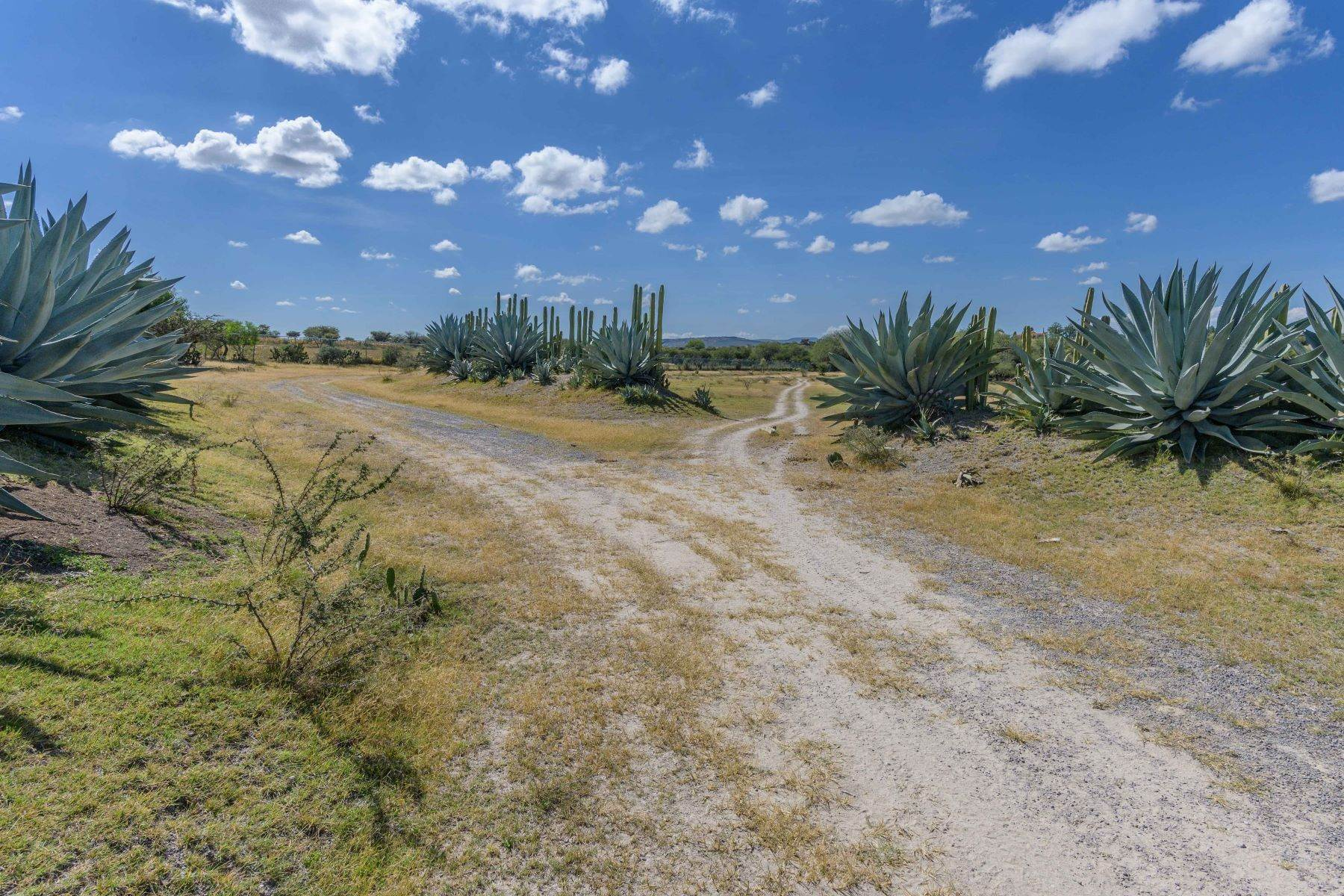 5. Farm and Ranch Properties for Sale at Calzada Los Pinos, Rancho La Aurora San Miguel De Allende, Guanajuato N/P Mexico